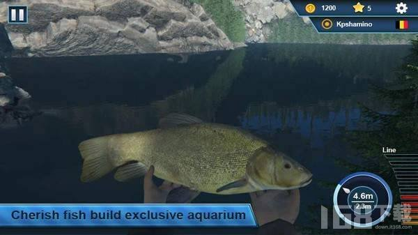 仿真钓鱼模拟器