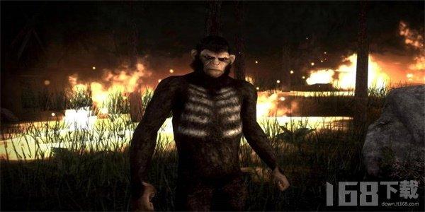 猩猩刺客2