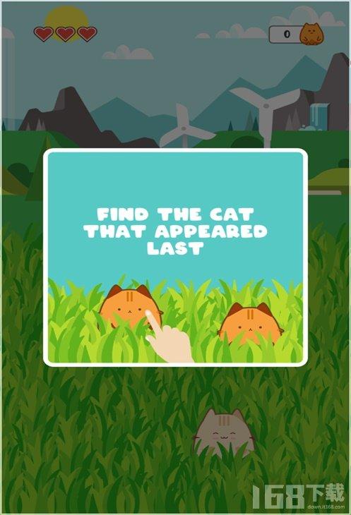 猫记忆训练
