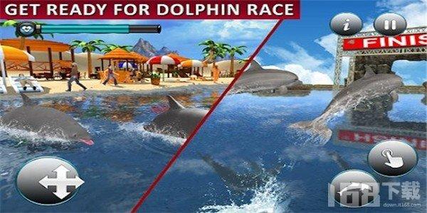海豚运输乘客