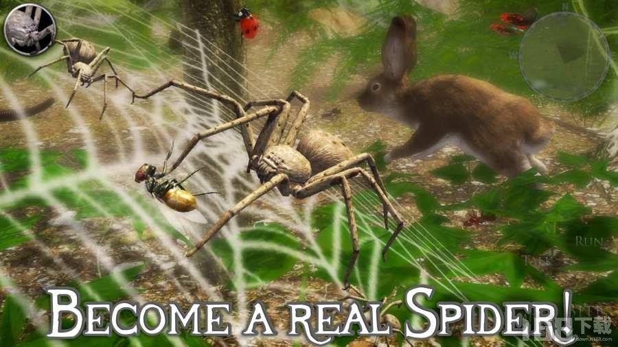 终极蜘蛛模拟器2