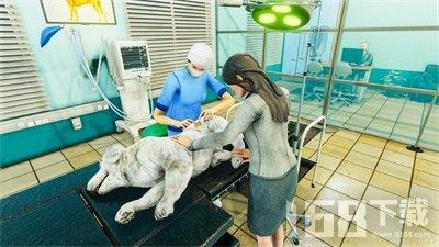 宠物医院模拟器