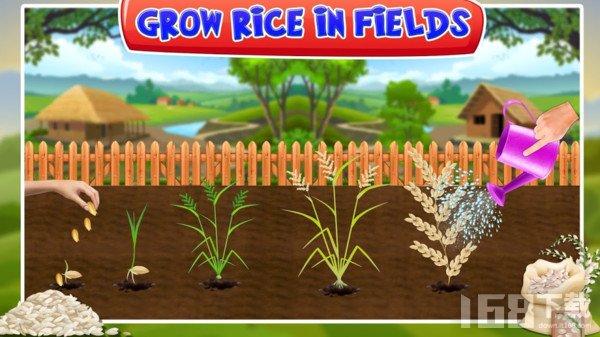 水稻种植工厂