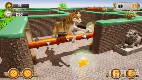 我的动物世界逃生