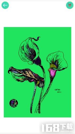 植物填色画画