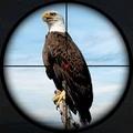 鸟类猎人狙击手
