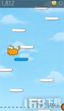 跳跃的胖猫