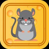 迷宫里的老鼠