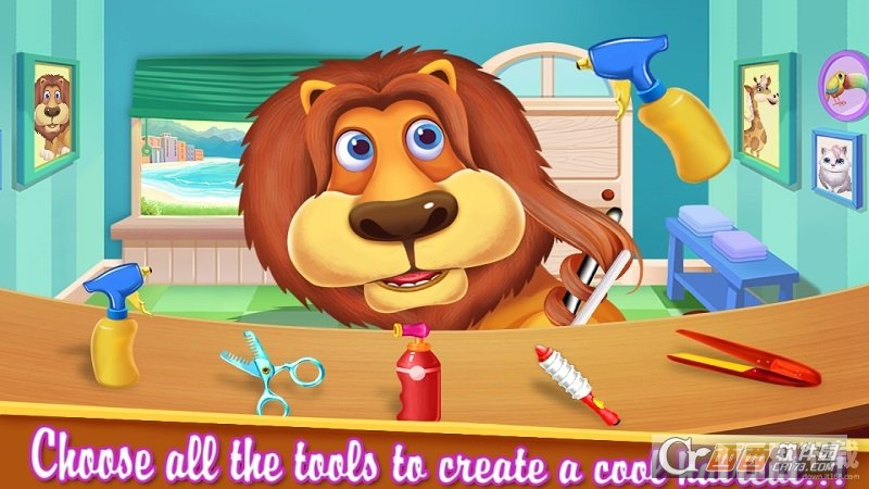 动物理发师