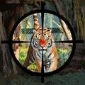 森林动物大狩猎