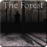 兰德里纳河的森林