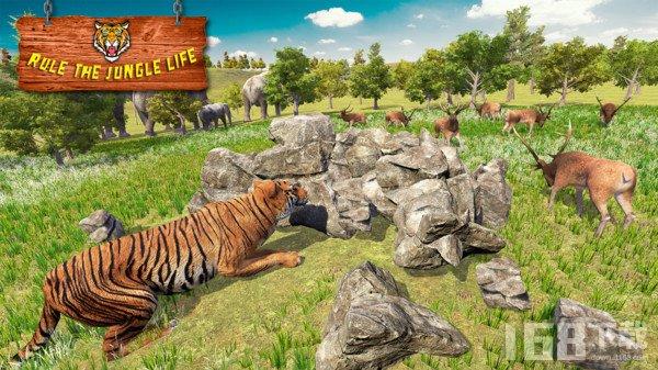 老虎家族模拟器
