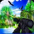 鸟类狩猎3D