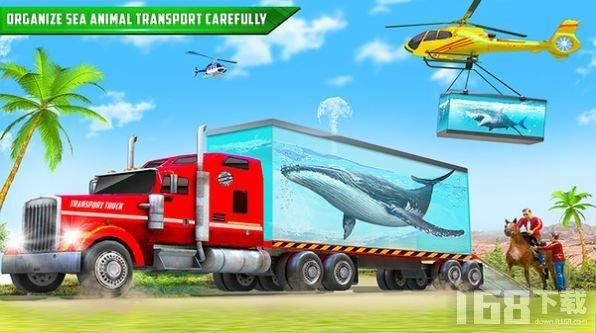 鲨鱼运输车