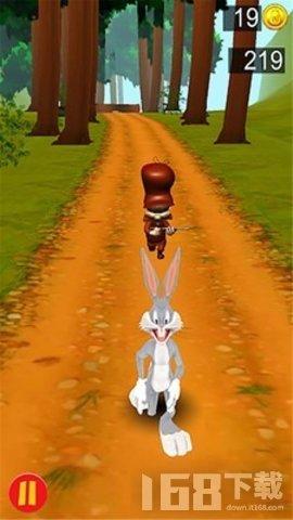 兔宝宝冲刺