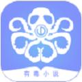有毒小说app