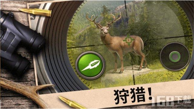 真实模拟打猎
