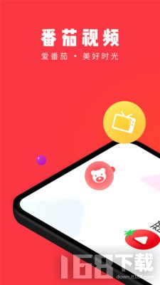 番茄视频app