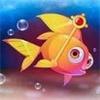 用水拯救小鱼