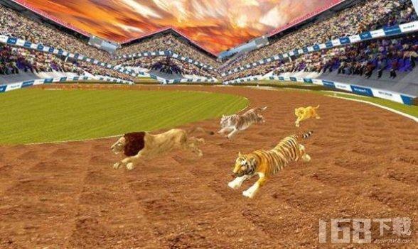 疯狂的丛林动物竞速