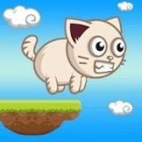 奇科猫向上跳