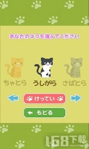 可爱猫的逆向对决