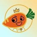 萝卜日记app