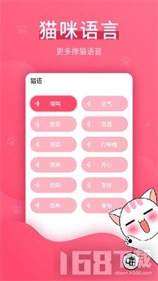 赢动猫语翻译器