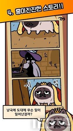 猫国王的请求