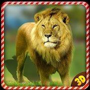 野生狮子愤怒报复