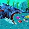 大鲨鱼进食