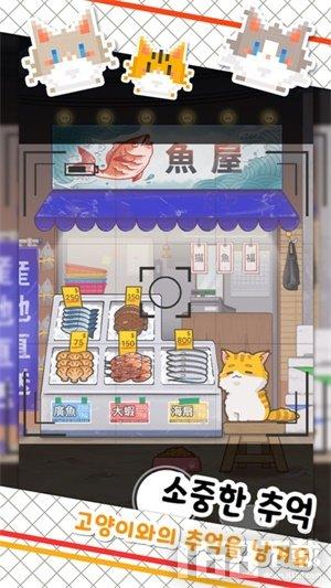 鱼店猫老板