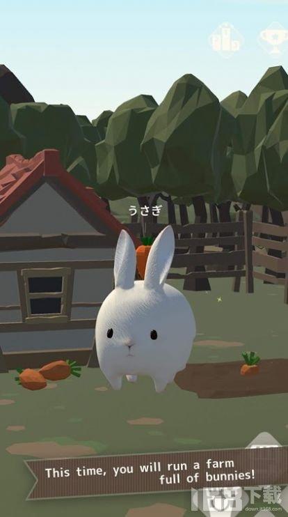 兔子真是太可爱了2