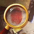 脑洞解谜大侦探