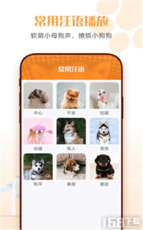 狗狗语交流翻译