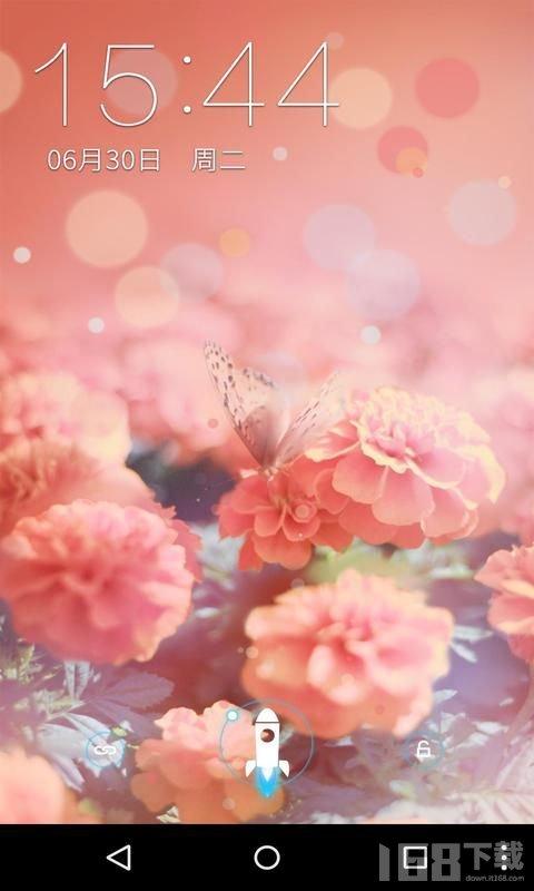 花蝴蝶免费