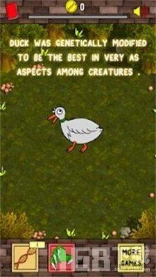 鸭进化生活