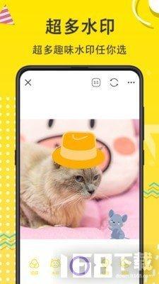 宠物动漫相机