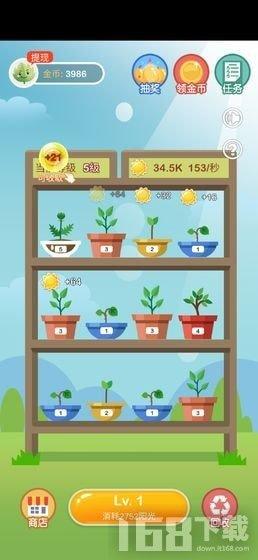 植物金币屋