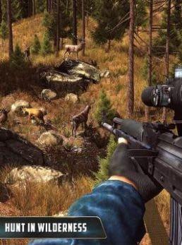 动物猎人丛林狙击手