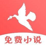 飞鸟免费小说