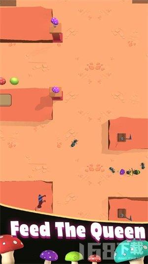 蚁丘模拟器