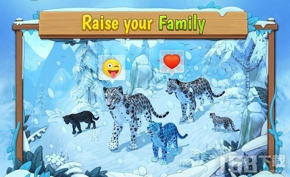 野生雪豹家族