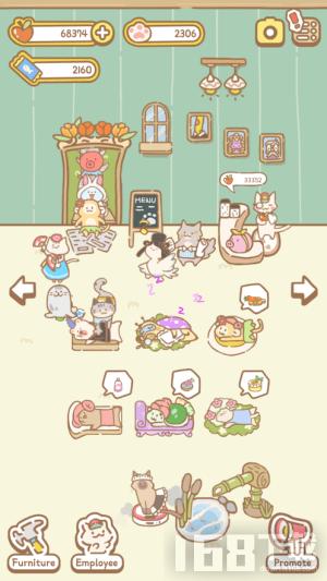 猫猫水疗馆