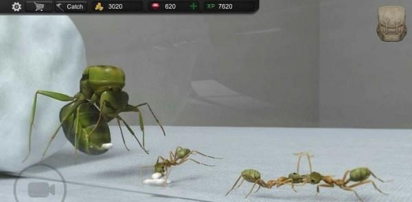 模拟蚂蚁大亨