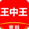 香港正宗王中王资料